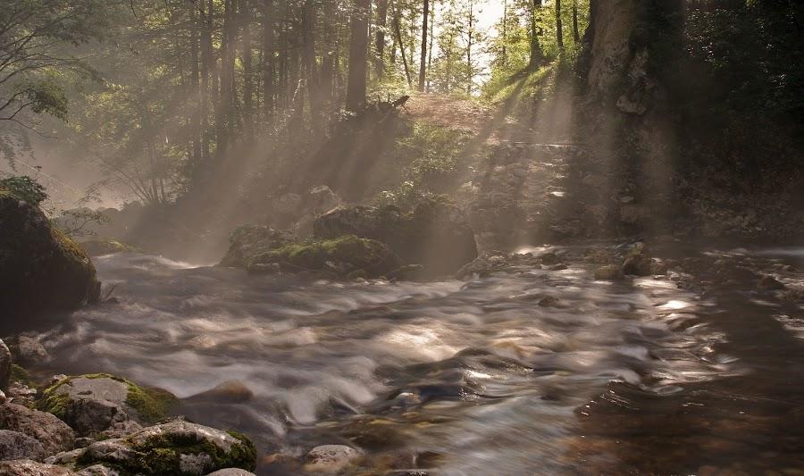 Mist above the stream by Jože Borišek - Landscapes Weather ( slovenia (bohinj) )
