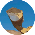BigBucket icon