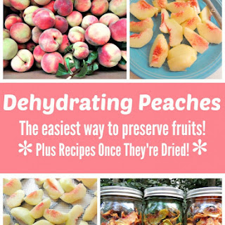 Dehydrating Peaches Recipe