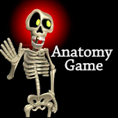 Anatomy Game