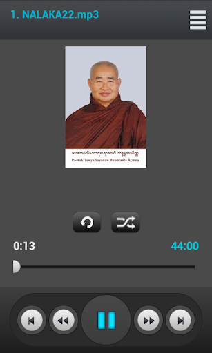 Venerable Pa Auk SayaDaw Vol 7