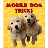Mobile Dog Tricks