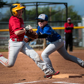 by Christa Ehrstein - Sports & Fitness Baseball ( red, baseball, blue, tag, out,  )