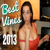 The Best Vines 2014