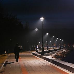 Golubac, Serbia by Irena Čučković - City,  Street & Park  Night ( night, evening )