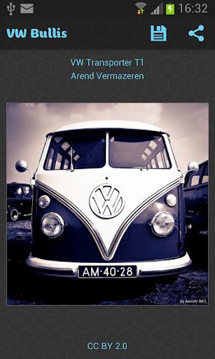 VW Bullis