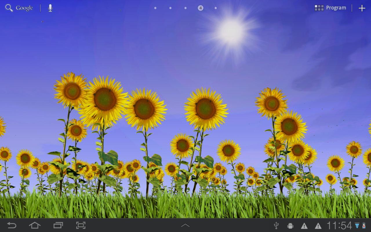 Sunflowers Free Live Wallaper- screenshot