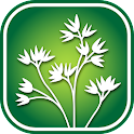 1350 Iowa Wildflowers icon