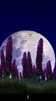 Screenshot of Wild Lupins Free