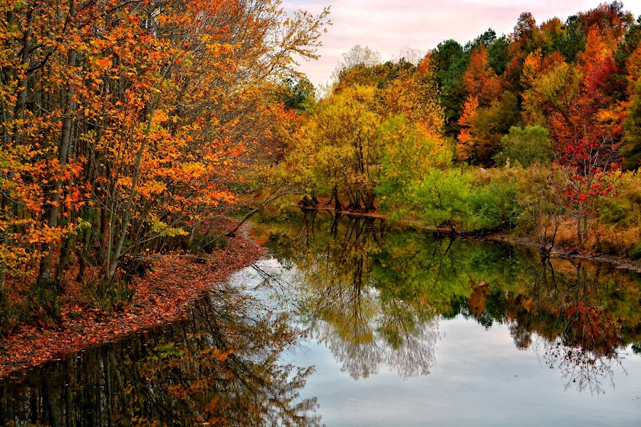 Afternoon along the Creek by James Gramm - Landscapes Waterscapes ( water, color, fall, reflections, trees,  )