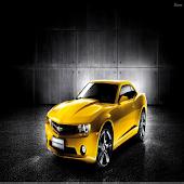 Chevrolet Camaro Lovers