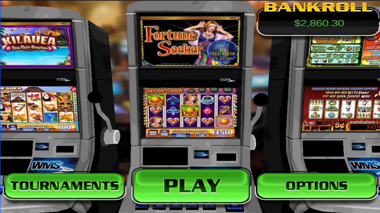 Fortune Seeker HD Slot Machine- screenshot