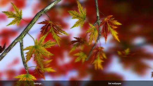 個人化必備APP下載|Autumn Leaves in HD Gyro 3D 好玩app不花錢|綠色工廠好玩App