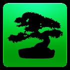 Bonsai Collection Pro icon