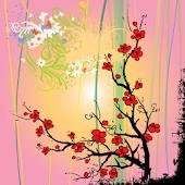 Sakura Sunrise Live Wallpaper