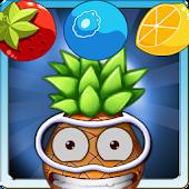 Fruit TokTok