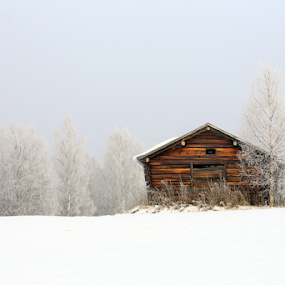 Old barn by Elisabeth Johansson - Buildings & Architecture Decaying & Abandoned ( winter, barn, fog, snow, light,  )