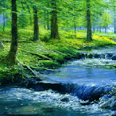 Forest River Live Wallpaper