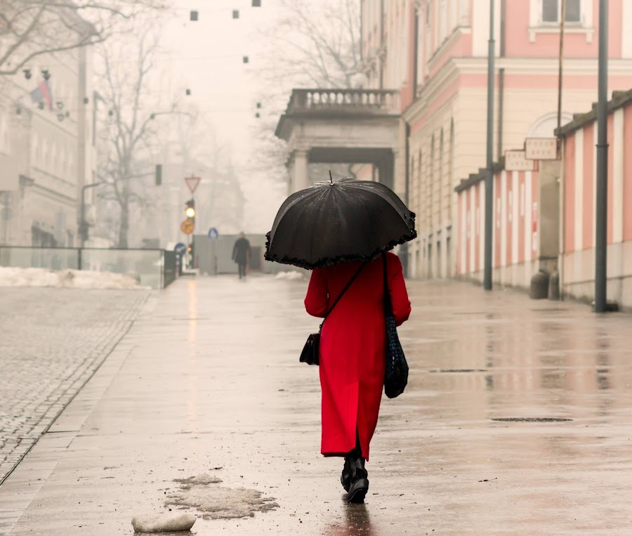 by Gregor Koščak - City,  Street & Park  Street Scenes ( rainy day, rainy, street, ljubljana, red coat, reflaction, women, people, urban, winter, umbrellas, red, girl, female, slovenia, snow, long red coat, traffic light, coat, rain, black, long coat )