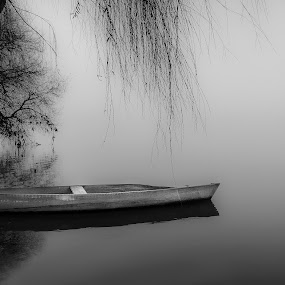 Resting by Paulo Veiga - Black & White Landscapes ( water, calm, peaceful, waterscape, 2014, black & white, bw, mood, pixoto, reflections, landscape, boat, resting, black and whithe, fog, bushes, aveiro, pateira-fermentelos, reflections on water, silhouettes, trees, portugal, paulo veigaphotography, mist,  )