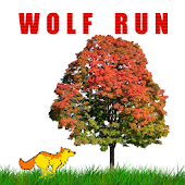 Animal Run Wolf Run