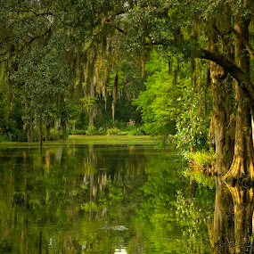 Deep, Deep South by Ivan Anchev - Landscapes Waterscapes