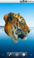 Screenshot of Tiger Profile Sticker