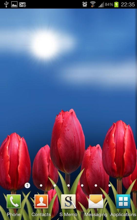 Flowers HD Live Wallpaper - screenshot