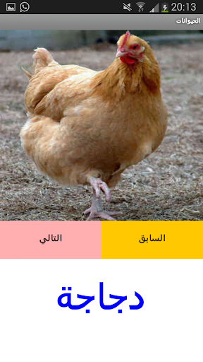 Animals in Arabic