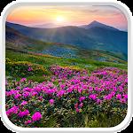 Mountain Flower Live Wallpaper
