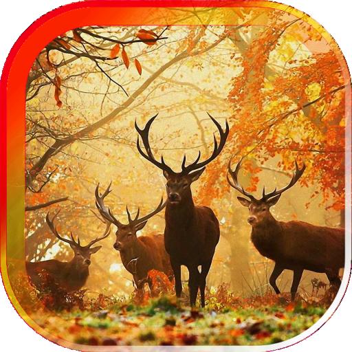 Autumn Voices live wallpaper 個人化 App LOGO-APP試玩