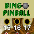 Bingo Pinball Dragon icon