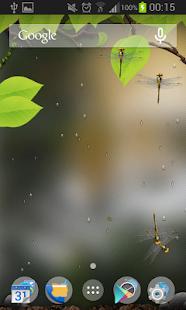 3D Rain Live Wallpaper