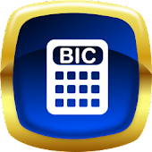 BIC Solver