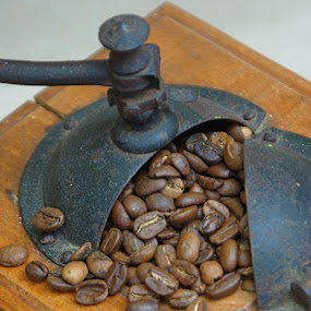coffee beans ... by Joseph Muller - Food & Drink Ingredients ( coffee beans ...,  )