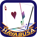 HAYABUSA Couple logo