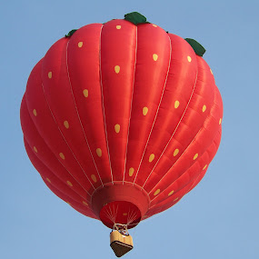 Big Strawberry by Ed Hanson - News & Events Sports ( red, hot, air, balloon )