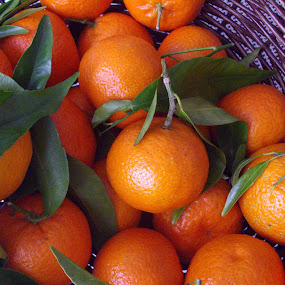 Clementines by Bozica Trnka - Food & Drink Fruits & Vegetables ( orange, juicy, fruit, sweet, clementine, colorful, mood factory, vibrant, happiness, January, moods, emotions, inspiration,  )