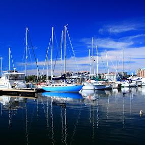 Fisherman's Wharf Marina by Rhonda Silverton - Transportation Boats ( boats, fisherman's wharf, victoria, marina, boat, bc, british columbia )