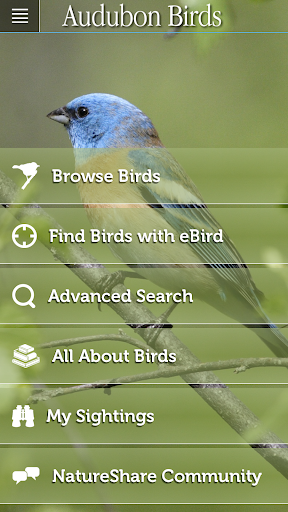 玩免費書籍APP|下載Audubon Birds of North America app不用錢|硬是要APP