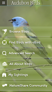 Audubon Birds Pro- screenshot thumbnail