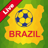 Brazil 2014. World cup guide