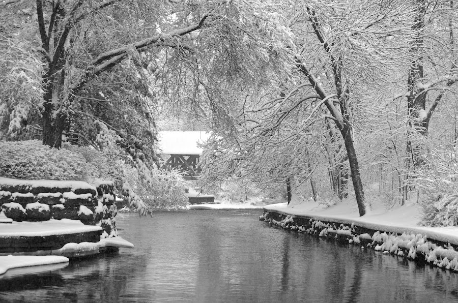 Bridge Over Peaceful Waters by Lynn Kirchhoff - Landscapes Weather ( naperville, covered bridge, dupage river, snowscape,  )