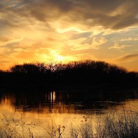 A riverside sunset by Chris Clay - Landscapes Sunsets & Sunrises ( iowa, sunset, desoto reserve, missouri river, nebraska )