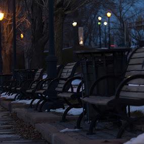 Evening Stroll  by Luis Mendez - City,  Street & Park  City Parks ( park, bench, mood, evening, classic )
