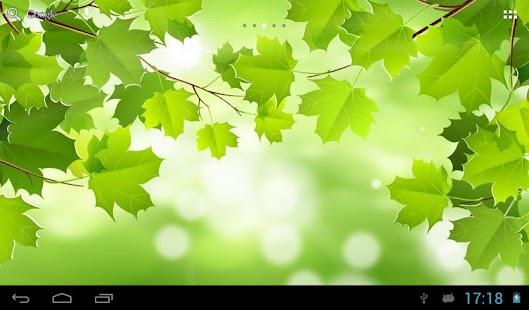 Summer nature screenshot