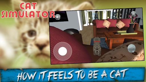 Pussy Cat Simulator 3D