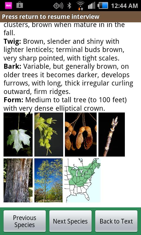 virginia tech tree id android apps on google play