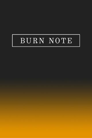 Burn Note - screenshot