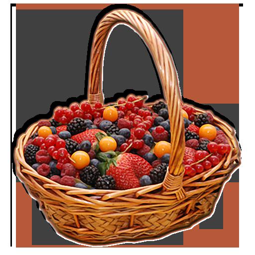 Грибы, Ягоды, Травы FREE LOGO-APP點子